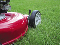 Gardening and lawn mowing