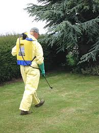 weed control by spray