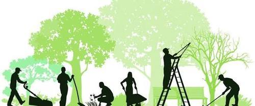 Cleaning green lawn mowing and gardening services for Garden cleaning services